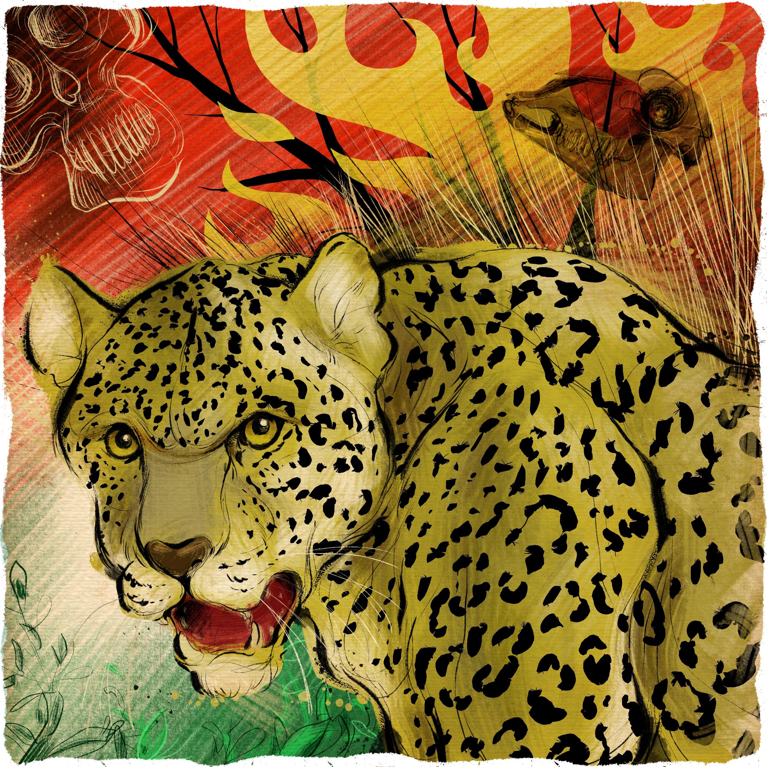 Arandú y los jaguares en Uruguay
